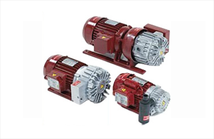 Vane type Dry Vacuum Pumps